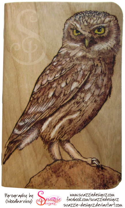 Owl Pyrograph FieldNotes Notebook