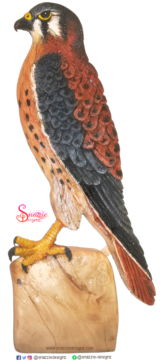 Handmade American Kestrel Pyrograph and Carving by snazzie-designz